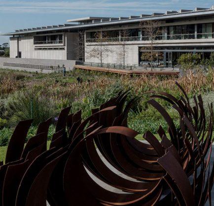 Norval Foundation Exhibitions Wim Botha and Mmakgabo Mapula Helen Sebidi
